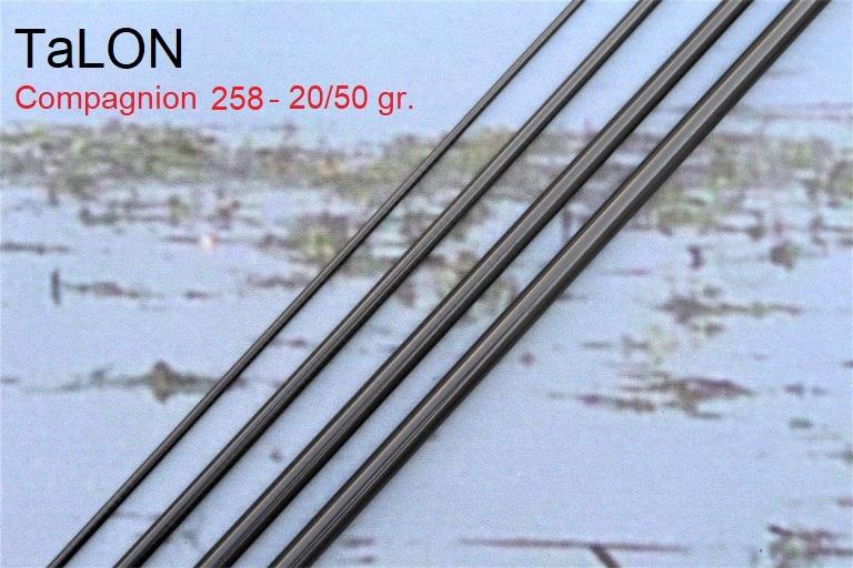 TaLON Compagnion 258-20/50gr.